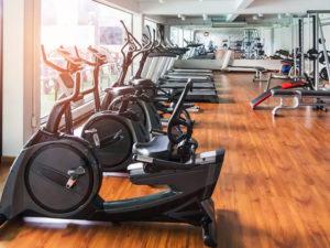 equipamentos lion fitness