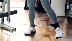 treinos para abdutores lion fitness
