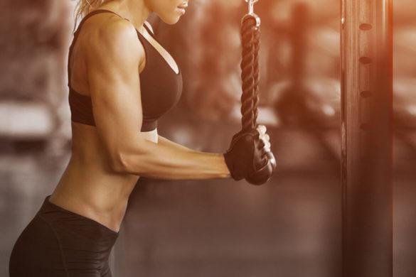 treino lion fitness