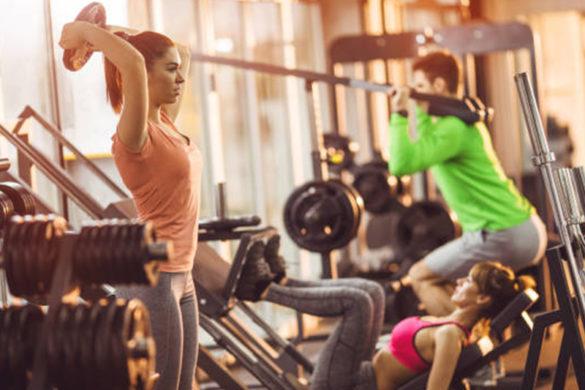 Equipamentos de academia como montar uma academia de sucesso lion fitness