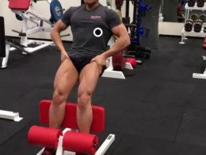 agachamento sissy lion fitness equipamento