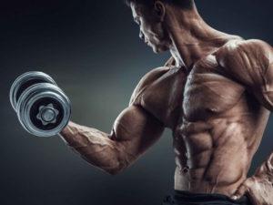 Definição muscular: 10 dicas para melhores resultados